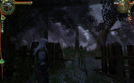 20080106-witcher2