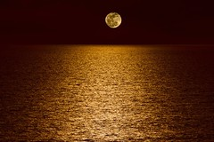 Moon Over Pacific Ocean (Kartik J) Tags: ocean california light sea sky moon water night clouds lune reflections landscape sandiego sony calm luna clear pacificocean oceanside moonlight sonycamera nila californiacentralcoast chand a500 chaand moonoverpacificocean chandamama sonydigitalslr sonyalphadslr chandrama sal70300 sal70300g sal70300gssm sonydslra500 sonyalphadslra500 kartikjayaraman