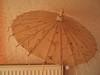 伞=umbrella