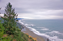 Gold Bluffs Beach overlook (kmanohar) Tags: california northerncalifornia worldheritagesite redwood westcoast spruce humboldtcounty pacificcoast goldrush californiacoast redwoodnationalpark californiagoldrush goldmine sitkaspruce redwoodforest northerncaliforniacoast goldmining temperaterainforest goldminer redwoodpark coastaldrive sprucetree goldbluffs redwoodcoast goldbluffsbeach majorcreek humboldtcountyca humboldtcountycalifornia pacificrainforest klamathcalifornia internationalbiospherereserve redwoodpreserve goldprospector californiarainforest northwestrainforest californiagoldprospector californiagoldminer coastalbufferforest bufferforest redwoodecosystem redwoodreserve cascadiacoast coastaldriveoverlook espalagoon goldbluffsminingcompany uniongoldbluffsminingcompany eurekagoldmining californiagoldmining