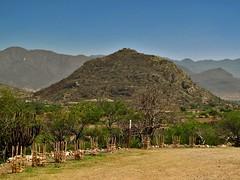 Cerro Da'nush (yaxchibonam) Tags: mexico oaxaca dainzu danush macuilzochitl