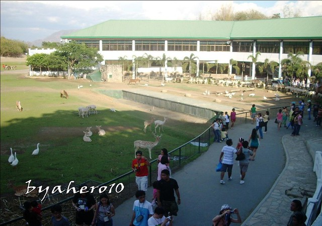 Baluarte, More than just a Zoo