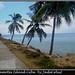 Camotes Island  mar 2010
