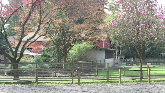 Maplewood Farm, North Vancouver