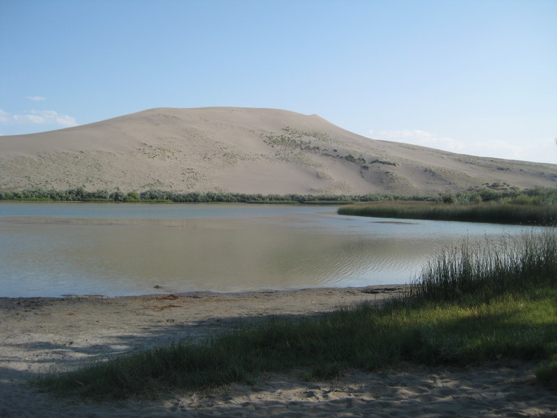 Dune and Water 1