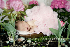 little princess (Heidi Hope) Tags: pink light portrait flower girl garden easter spring soft egg bowl newborn robinsegg heidihopephotography heidihope httpwwwheidihopecom httpwwwheidihopeblogspotcom