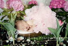 little princess (Heidi Hope) Tags: pink light portrait flower girl garden easter spring soft egg bowl newborn robinsegg heidihopephotography heidihope httpwwwheidihopecom httpwwwheidihopeblogspotcom