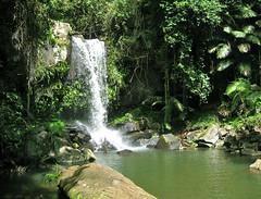 Waterfall (~hera~) Tags: easter waterfall rainforest mt australia falls mount queensland april curtis 2010 tamborine