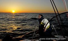 Ophiusa - Tan sólo la puesta de sol ya justifica el esfuerzo