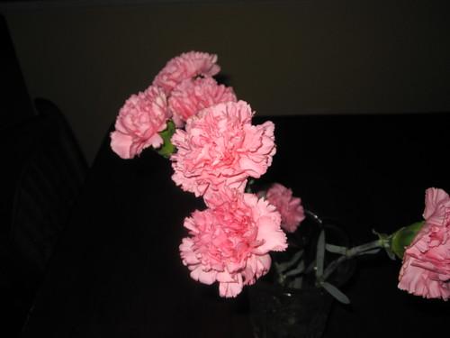blog_foto_April 008