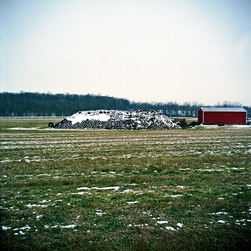 Silage #2