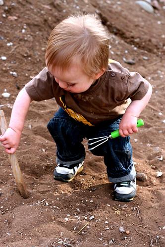 stick digging