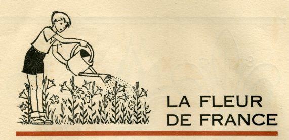 La fleur de FRANCE