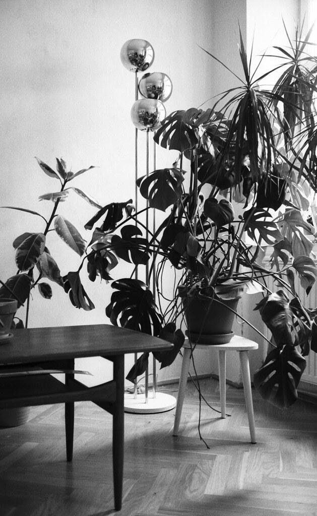 Interieur (Bernhard Benke) Tags: Vienna Wien Design Lampe Blackwhite  Interieur Parkett Möbel Kodaktmax400