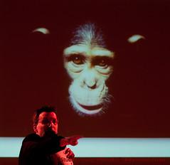 JIM CRONIN GALA DINNER 030410 MAD GRAHAM MACK 02_ (StudioVerrico) Tags: chimpanzee primate monkeyworld primates chimpanzees rescuecentre galadinner rescuecenter jimcronin primatesanctuary alisoncronin jimcroninmemorialdinner jimcroninmemorialfund jimcroninmemorialdinner2010 primatesanctuaries