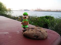 028/365 - Miss Chloe harbour (datenhamster.org) Tags: project river toy keks hamburg chloe 365 miss hafen fluss elbe picknick coockie harbbour