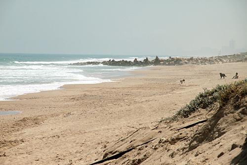 wild-beach-valencia