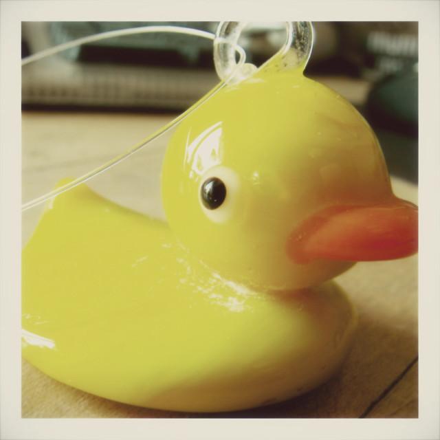 ducky 'roid {fake}