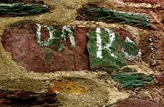 Trace(s) (Pegasus & Co) Tags: art graffiti brittany photographie culture bretagne histoire politique livre ville medias britannia urbain presse graffs bretagna llydaw littrature divertissement    bhriotin
