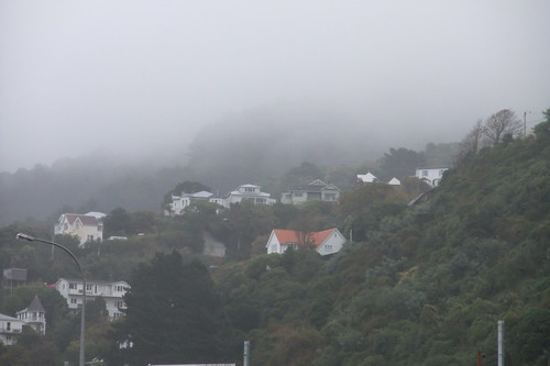 Wellington in fog