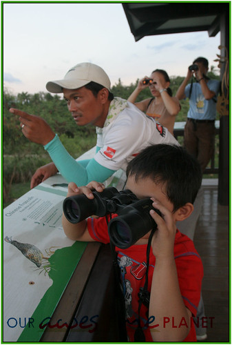 Bird Watching @ Nuvali-85