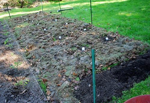 Expanding garden 3