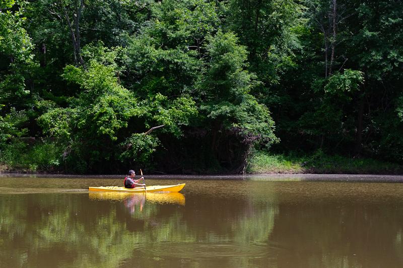 Day 228: Kayak