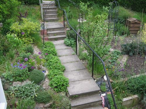 Path June 01 2010