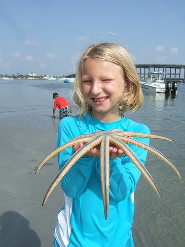 Hannah finds a 9 armed starfish!