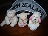 Proud Kiwis (Singing With Light) Tags: hat sheep pentax worldcup kiwi jjp softtoys magnetictoy k200d shoodle bahbahra jjpk200dpentax