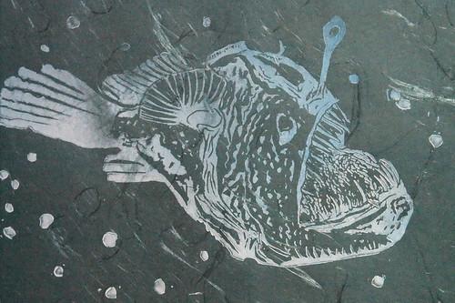 anglerfish 065