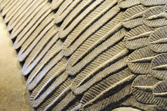 Feathers (Son of Groucho) Tags: detail feather wingedbull assyrian