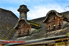 Taubenschlag - Pigeon house (schickma) Tags: roof chimney cloud brown house tree brick clouds moss boards hole pigeon board pigeons curves luke grain flight shed shingle wolke wolken haus holes brett gutter hatch loch braun shelter curve taube dach baum schornstein dachziegel moos bogen dovecote tauben dachrinne roofingtile lcher ziegel gutters hatches anflug schindel taubenschlag maserung bgen bretter unterstand luken dachrinnen verschlag
