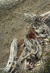 Driftwood HDR (mistymisschristie) Tags: beach washington twilight sandy rocky driftwood hdr universityplace centralmeadow allrightsreserved chamberscreekproperties chambersbaygolfcourse mistymisschristie chrisanderson2010