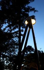 IMG_9600 (jalexartis) Tags: lighting diy diylighting evening nightphotography night nightshots