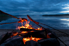 sausages cooking on a campfire on the shore of a lake (VisitLakeland) Tags: finland lakeland scenery lake night midnight nightless keskiyö keskikesä yötön yö campfire nuotio heijastus reflection shore beach ranta hiekkaranta sausages makkara makkaranpaisto makkarakeppi