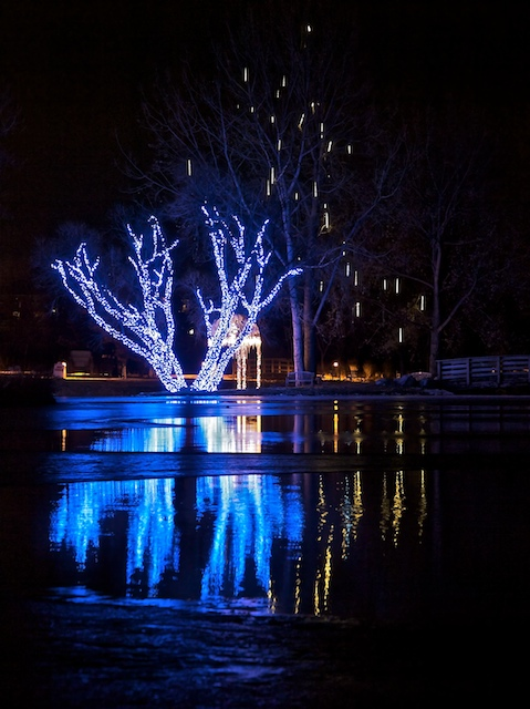 Icy blue reflections