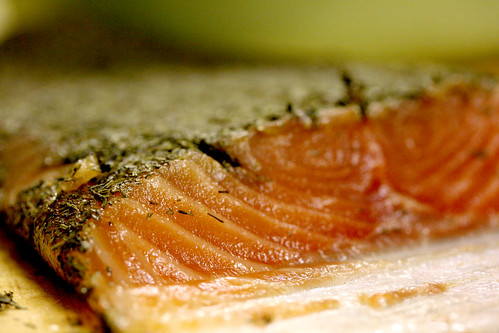 Cross section of gravadlax 2