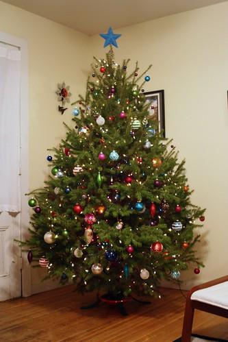 Christmas Tree 2009-08m
