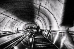 Paranoia in the Underground ( D L Ennis) Tags: blackandwhite bw monochrome washingtondc ride tube feeling paranoia dcmetro occurance prevalent subwayline deepunderground esculater dlennis extremelylong paranoiaintheunderground eyesofpeople