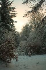 fresh air! (boebelgoem) Tags: januari2010