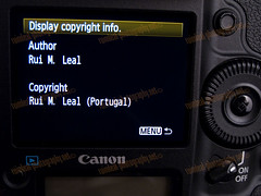 1D MarkIV C.FnIV Copyright Information Menu Display