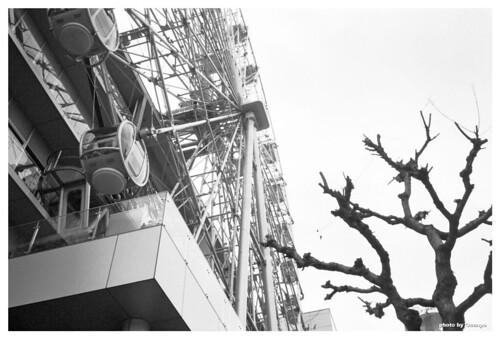 Ferris Wheel #04