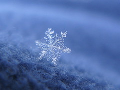 star (**MIKA**) Tags: snowflake snow crystal blau stoff eisblume schneeflocke canonpowershotg7