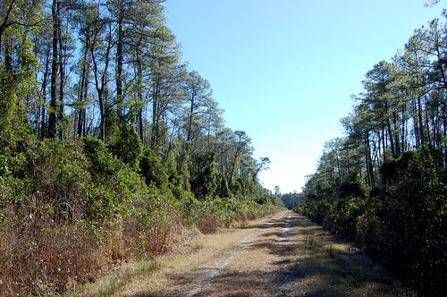 hudnell ditch road