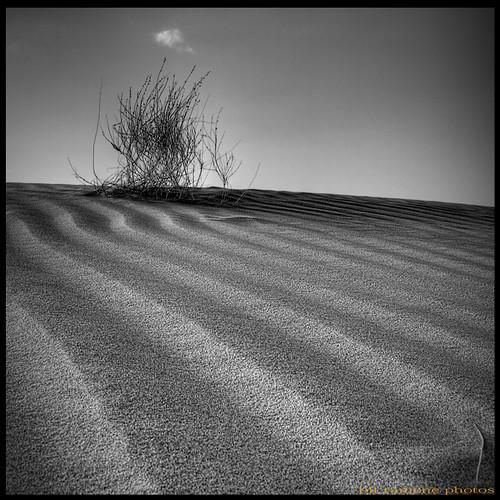 viento y arena