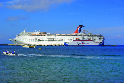Cruise 183