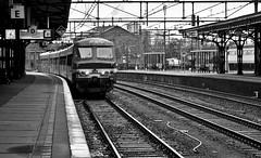 1a (Cirduow) Tags: netherlands station train one 1 belgium ns platform nederland railway l antwerp brabant antwerpen trein spoor flanders noord roosendaal nmbs stationstraat