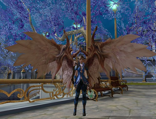 Aion Lvl 30 Wings