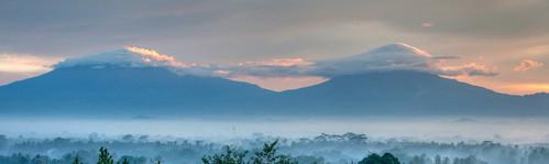 Borobudur 14
